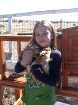 S bunnies3